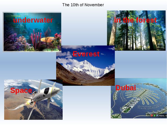 The 10th of November underwater in the forest Everest Space Dubai