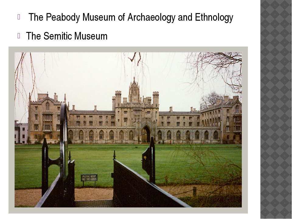 The Peabody Museum of Archaeology and Ethnology The Semitic Museum
