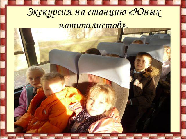 Экскурсия на станцию «Юных натуралистов».