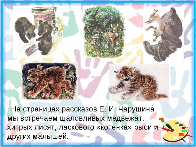 На страницах рассказов Е. И. Чарушина мы встречаем шаловливых медвежат, хитр...