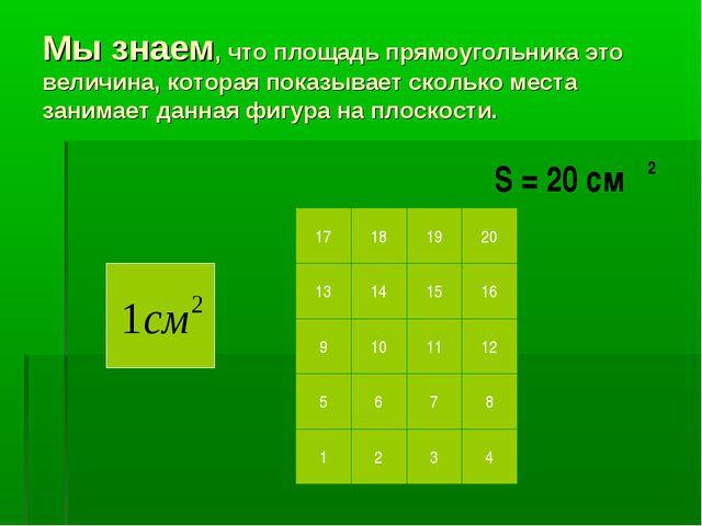 Мы знаем, что площадь прямоугольника это величина, которая показывает сколько...
