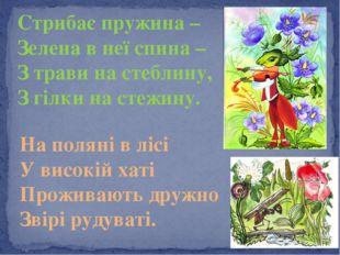 Стрибає пружина – Зелена в неї спина – З трави на стеблину, З гілки на стежин