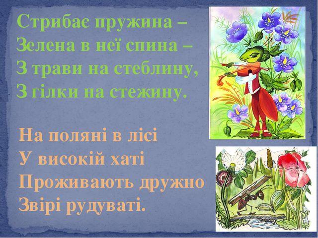 Стрибає пружина – Зелена в неї спина – З трави на стеблину, З гілки на стежин...