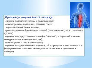 Признаки нормальной осанки: - прямое положение головы и позвоночника; - симме