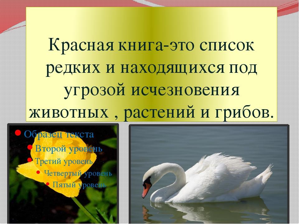Красная книга-это список редких и находящихся под угрозой исчезновения животн...