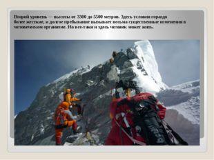 Второй уровень — высоты от 3300 до 5500 метров. Здесь условия гораздо более ж