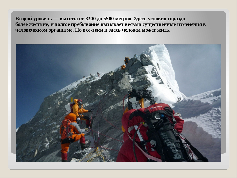 Второй уровень — высоты от 3300 до 5500 метров. Здесь условия гораздо более ж...