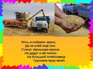 Хоть и собрано зерно, Да не хлеб ещё оно. Станут зёрнышки мукою Не дадут и ей