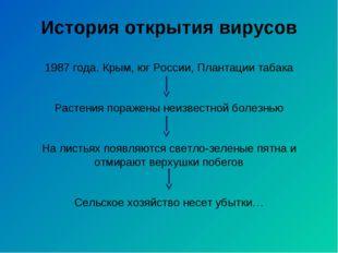 История открытия вирусов 1987 года. Крым, юг России, Плантации табака Растени