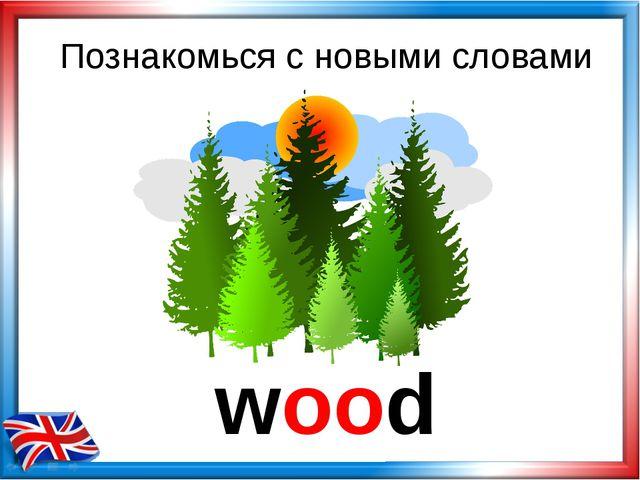 wood Познакомься с новыми словами