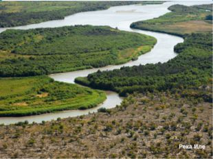 Сырдария Сырдария - самая мутная река в республике, размывает рыхлые породы,