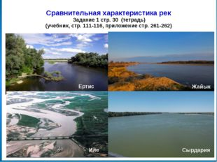 Это интересно… В поймах, какой реки находятся камышовые заросли, где водятся
