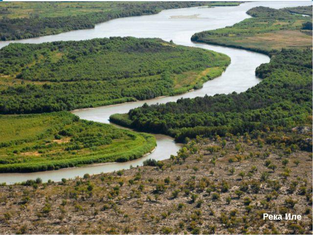 Сырдария Сырдария - самая мутная река в республике, размывает рыхлые породы,...