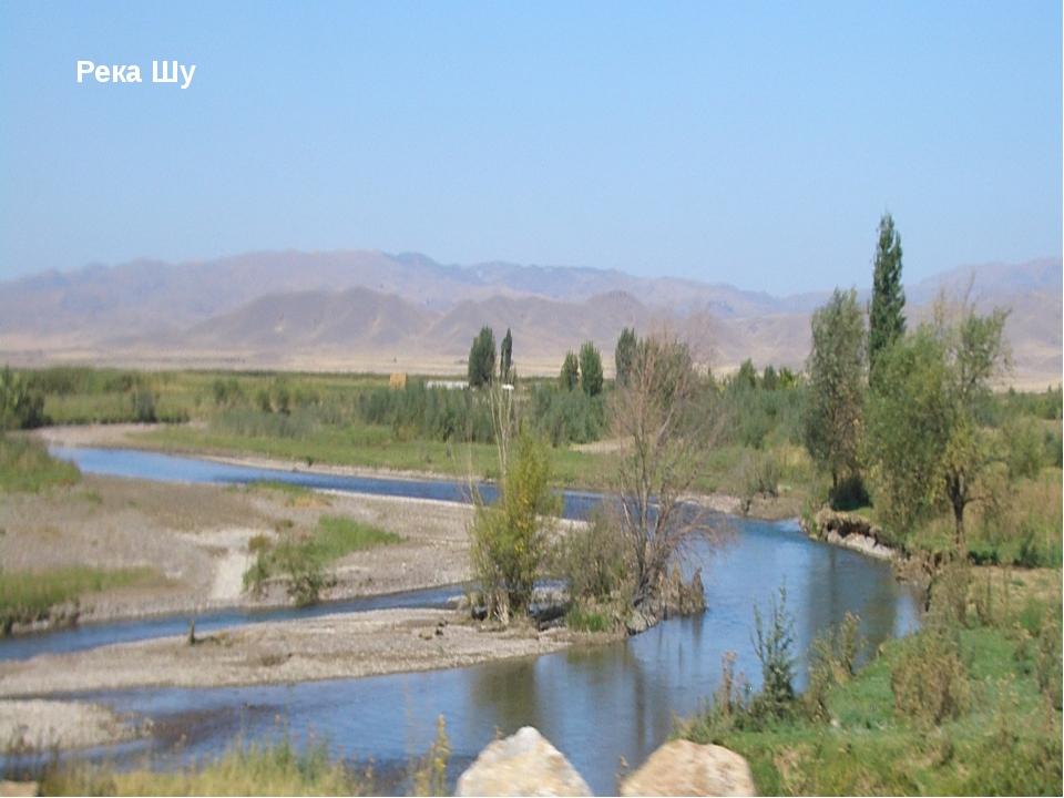 Задания Напишите рядом с цифрой определение: ответы Река со всеми притоками Т...