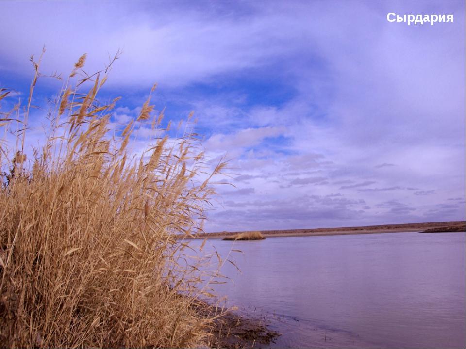 Ертис Ертис— река Казахстана, главный приток реки Обь. Длина 4248 км. Исток К...