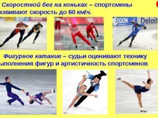 Скоростной бег на коньках – спортсмены развивают скорость до 60 км/ч. Фигурн