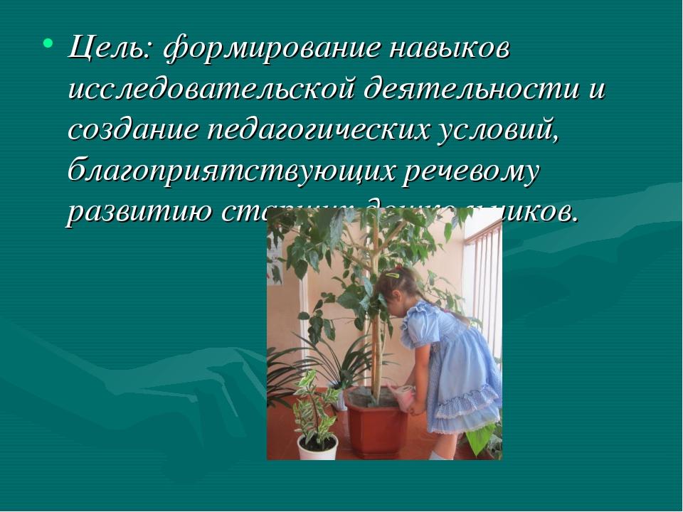 Цель: формирование навыков исследовательской деятельности и создание педагоги...