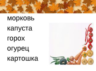морковь капуста горох огурец картошка