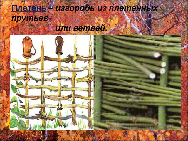 Плетень – изгородь из плетенных прутьев или ветвей.