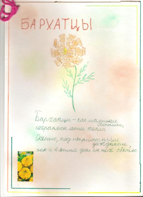 F:\1 класс 21 век\цветы проект\Image (2).bmp
