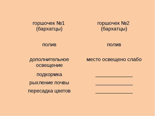горшочек №1 (бархатцы) горшочек №2 (бархатцы) полив полив дополнительное осве...
