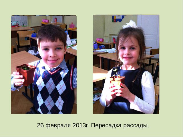 26 февраля 2013г. Пересадка рассады.