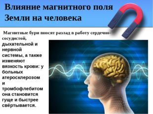 Влияние магнитного поля Земли на человека дыхательной и нервной системы, а та