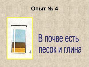 Опыт № 4