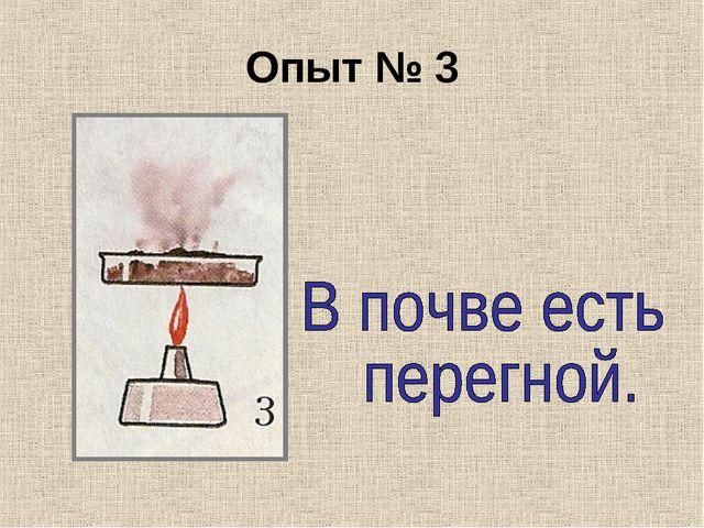 Опыт № 3