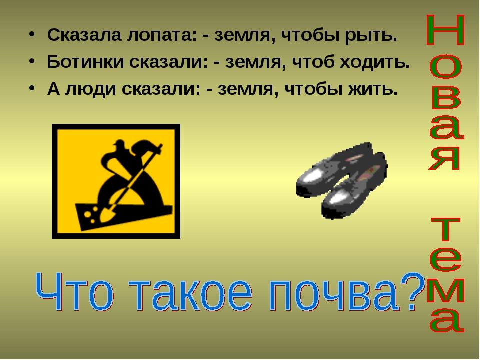 Сказала лопата: - земля, чтобы рыть. Ботинки сказали: - земля, чтоб ходить. А...