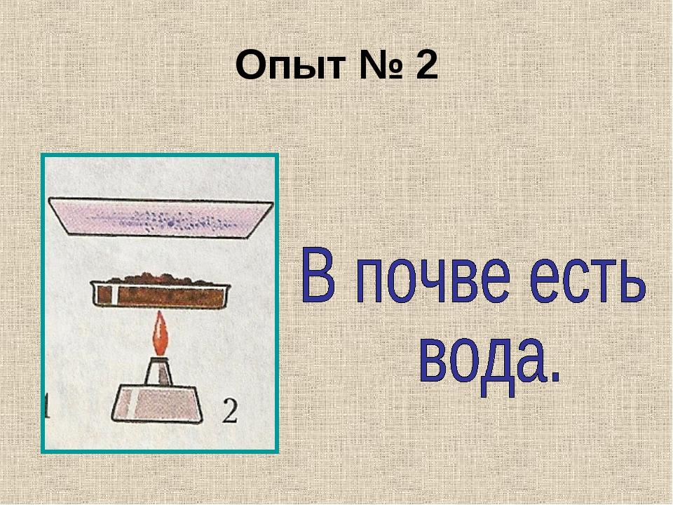 Опыт № 2