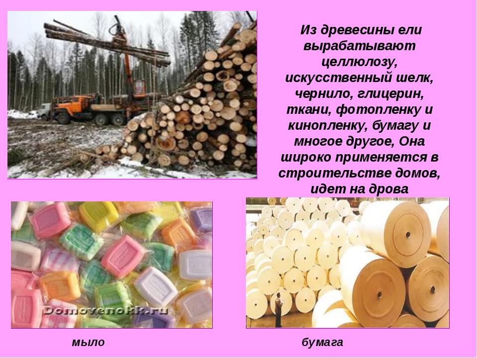 Из древесины ели вырабатывают целлюлозу, искусственный шелк, чернило, глицер...