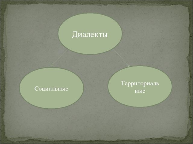 Диалекты Территориальные Социальные