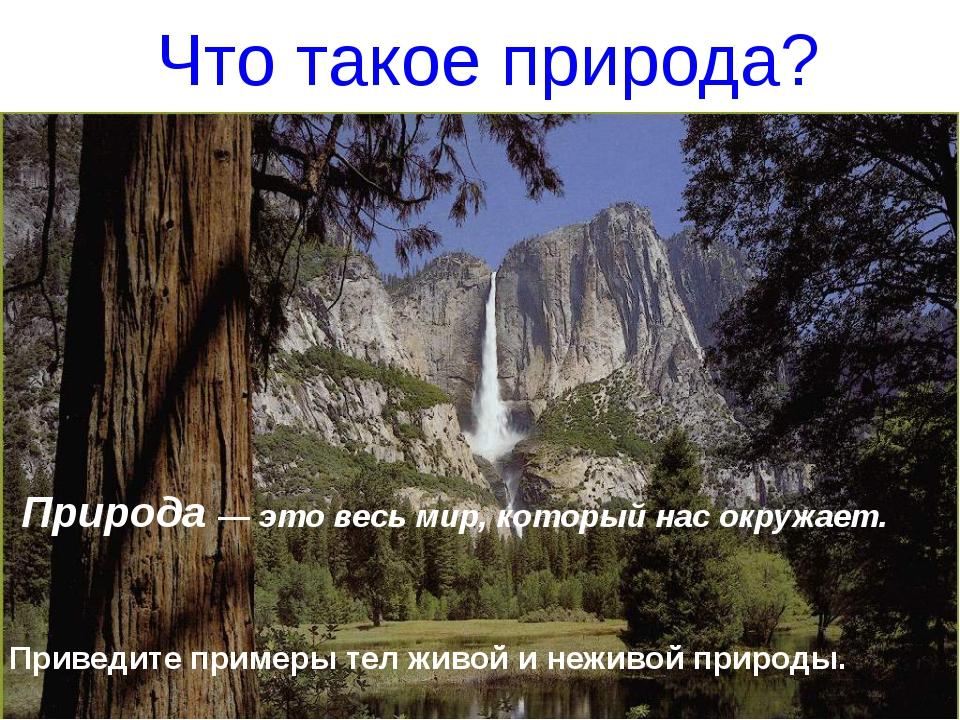 Что такое природа? Природа — это весь мир, который нас окружает. Приведите пр...