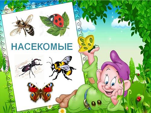 Детям о насекомых презентация- Насекомые презентация Скачать…