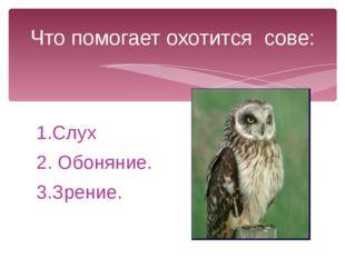 1.Слух 2. Обоняние. 3.Зрение. Что помогает охотится сове: