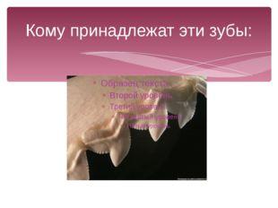 Кому принадлежат эти зубы: