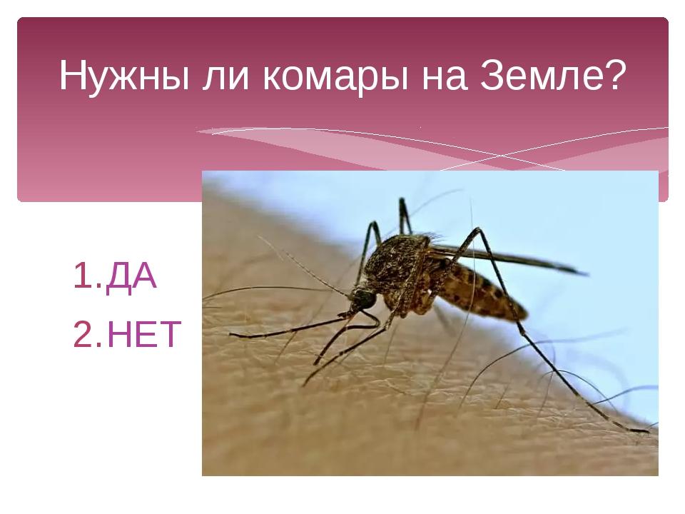ДА НЕТ Нужны ли комары на Земле?