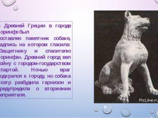 В Древней Греции в городе Коринфе был поставлен памятник собаке, надпись на к