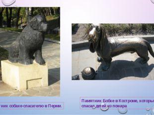 Памятник собаке-спасателю в Перми. Памятник Бобке в Костроме, который спасал