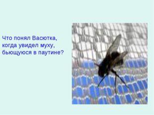 Что понял Васютка, когда увидел муху, бьющуюся в паутине?