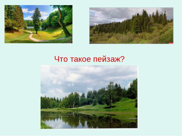 Что такое пейзаж?