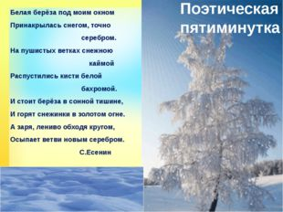 Поэтическая пятиминутка Белая берёза под моим окном Принакрылась снегом, точн