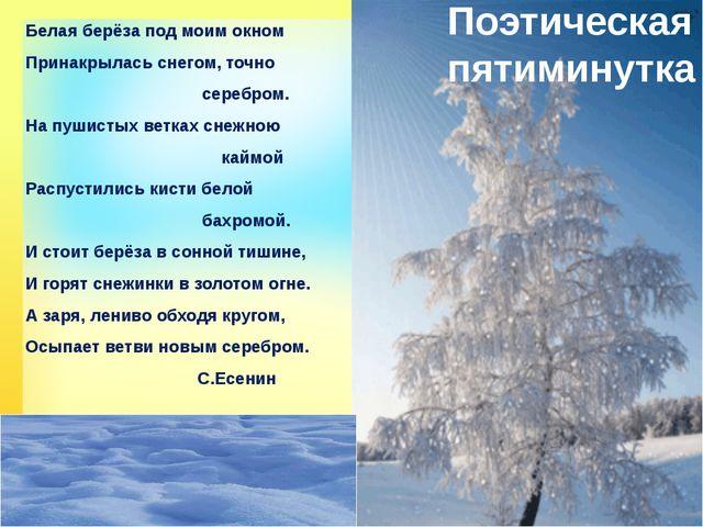 Поэтическая пятиминутка Белая берёза под моим окном Принакрылась снегом, точн...
