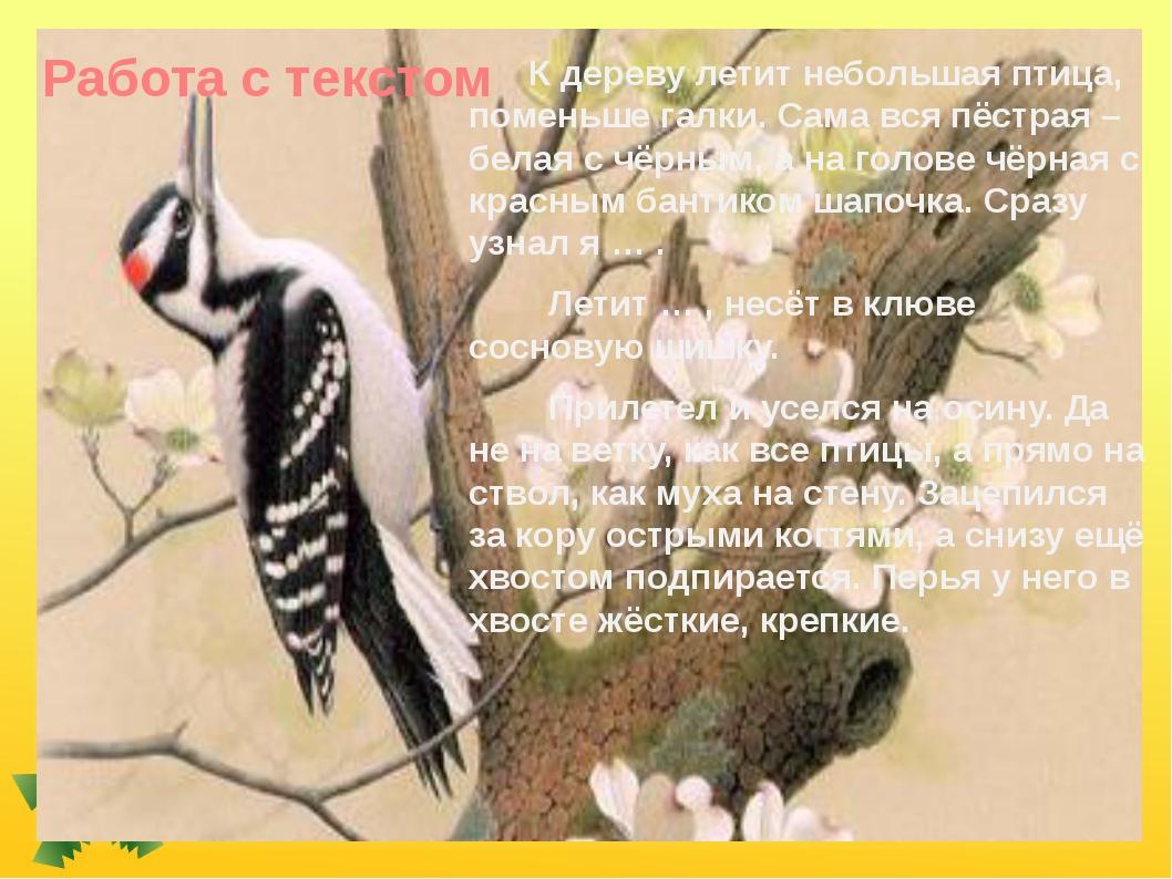 Работа с текстом К дереву летит небольшая птица, поменьше галки. Сама вся пёс...