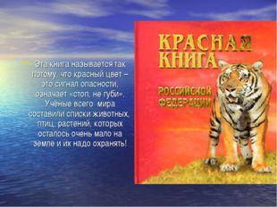 Эта книга называется так потому, что красный цвет – это сигнал опасности, озн