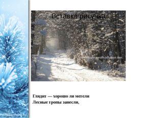 Глядит — хорошо ли метели Лесные тропы занесли, ProPowerPoint.Ru