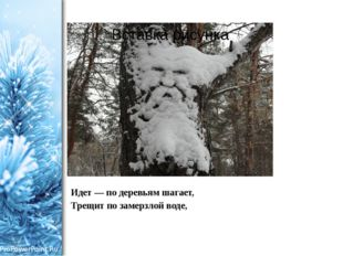Идет — по деревьям шагает, Трещит по замерзлой воде, ProPowerPoint.Ru