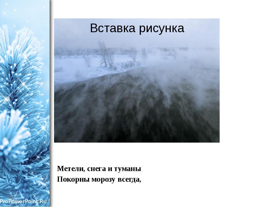 Метели, снега и туманы Покорны морозу всегда, ProPowerPoint.Ru