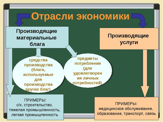 Отрасли экономики Производящие материальные блага Производящие услуги ПРИМЕРЫ...